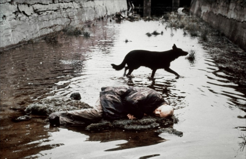 The Vicinity of the Real (Tarkovsky's Stalker) Stalkerdog-1024x663
