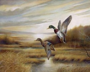 Master Minkowski's Wild Ducks (Zen and the Glass Block Universe) Ducks2-300x240